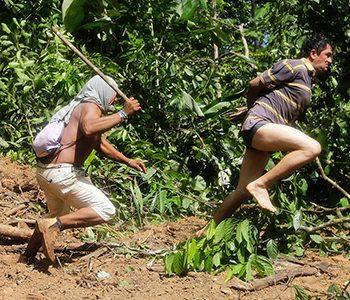 Taietori ilegali de lemne batuti si umiliti de indienii amazonieni (FOTO)